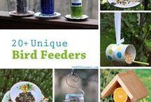 Birds, Bird feeders, birds seed......... / Cute Bird Feeders, bird baths, bird seed/food recipes, etc. / by Christine Jensen