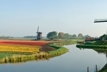 Dutch / by Elizabeth Downard