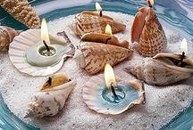 seashell crafts / by Lauren Delius