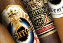 Ashton Cigars - AbsoluteCigars.com / by Absolute Cigars
