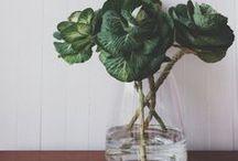 Flora / by make+haus