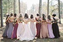 My Someday Wedding / by Mandi Sordelet