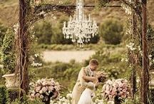 Wedding / by Daisy Eubanks