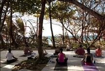 Rincon PR- Yoga & Massage / by Rincon Puerto Rico