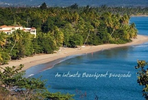 Rincon PR - Hotels & Resorts / Surf, Play & Stay Rincon, PR - Great lodging options with these fine hotels and resorts. For more information on all of Rincon Puerto Rico please visit www.surfrinconpr.com / by Rincon Puerto Rico