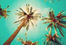 .:: Beach Babe ::. / by Katie ♡