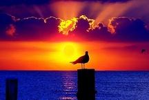 Sunrise...Sunset... / by Emily Pederson