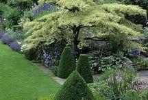 A New Garden / by Faire Garden
