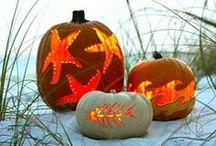 Halloween  / boooooo to do... / by Sandra Dee