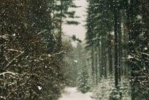Winter / by Leigh-Anne Hunnicutt
