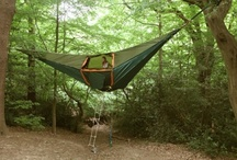 Camping Etc. / by Stephanie .