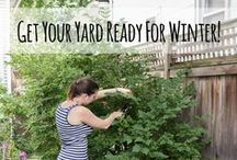 Gardening - Tips for / by Patti Craven