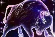 About Taurus - Zodiac / by Patti Craven