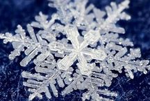 Snowflakes / Thank you for sharing your pins and feel free to repin as many as you want! / by Tamara Llanes
