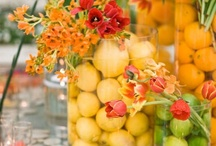 Tablescapes / by Edie Blough
