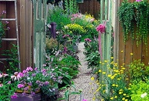 Flowers and Gardens / by Carrie
