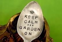 Garden A Go Go / by Carol Roberts