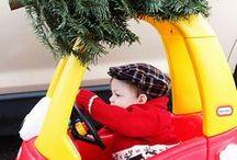 Christmas Cheer / by Lindsey Herrick