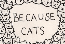 Cats are awesome creatures / by Kimberly Even