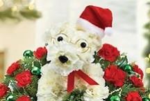 ideas- Christmas/winter / by Rosemarie Jones