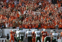 Canes Fans / by Miami Hurricanes