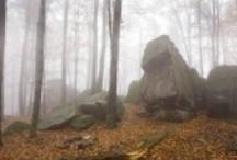 Memory and landscape / by Tomasz Pomorski
