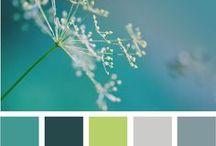 Addicted to Color / by Jennifer Dinning Brenda Remlinger