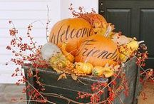 I love everything about fall. / Pumpkin / Recipes / Crafts / DIY / Holidays / Halloween / Costumes / Decor Ideas / by Maegan Dockery
