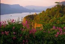 Pacific Northwest & Washington State my home / by Glenda Gibbs
