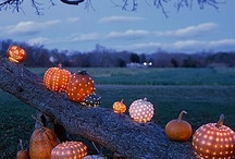 Everything: Autumn / Paying homage to my favorite time of year / by Cassandra Byers