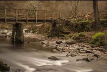 Lovely Landscapes / by Paul Cullen Photography