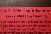 C & M Wild Hog Adventure  / WILD HOG-BOAR-PIG HUNTING TEXAS STYLE / by jennifer bennet