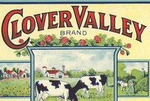 Advertising Prints (Vintage) / by Beverly Lett