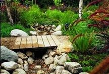garden/patio/yard / by barbara miller