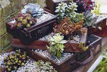 Life's a Garden... Dig it. / by Jennifer Schott