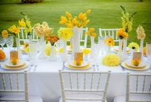 Table Settings / by Jennifer Decator