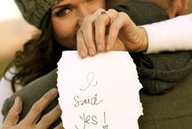 Hey baby, I think I wanna marry you / Wedding tips, tricks, ideas, and dreams / by Katie Heginbotham