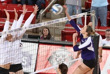 SoCon Volleyball / by Southern Conference