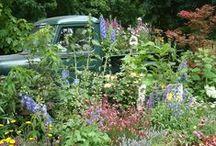 Garden Center displays / by NationalGardenBureau
