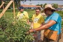 """NGB Growing For Futures / NGB has launched the first-of-its-kind """"Growing for Futures"""" (#growingforfutures) philanthropic program to build therapeutic gardens across the country. You can help by donating at https://www.indiegogo.com/projects/national-garden-bureau-is-growing-for-futures  / by NationalGardenBureau"""