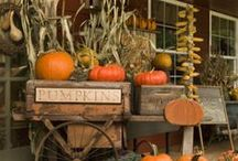 Happy Halloween/Fall Crafts!! / by Chelsea Lundquist