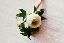 Floral / by Randi Marie Photography
