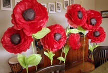 Poppies / by Merrily Me