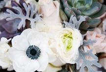 floral design / by Leslie Ila