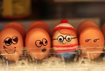 Eggsciting / by Eggland's Best