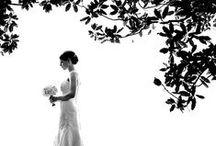 Weddings / by Tabitha Stevens