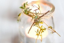 Winter Joy / by Heather Fontenot