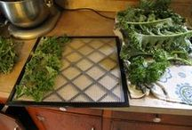 Dry It, You'll Like It! / Dehydrating foods, along wth backpacking, camping and trail cooking recipes. / by Elizabeth