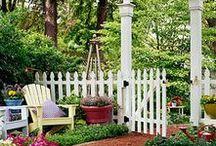Garden / by Diane Lavery Stevens
