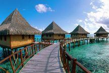 Semana de Vacaciones en Kenia / ¡Nos vamos a África! 8 días 7 noches : 5 noches en el Hotel Papillon Lagoon Reef 4* situado en las las playas de Mombasa en régimen de Todo incluido + 1 noche en el Hotel Jacaranda 3* sup. situado en Nairobi en régimen de media pensión + Vuelos / by Busco Un Chollo